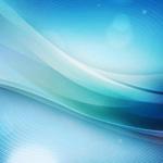 【チャンピオンズカップ2015】回顧と阪神ジュベナイルフィリーズの穴馬候補