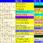 スワンステークス2014予想│血統データ検証!歴代激走馬の共通点とは?